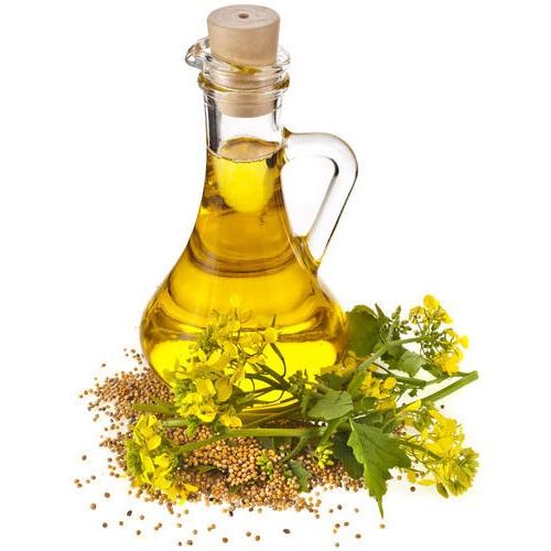 olej rzepakowy primus